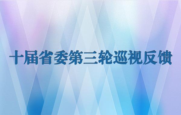 十届省委第三轮巡视反馈专题
