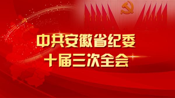 安徽省纪委十届三次全会