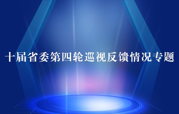 十届省委第四轮巡视反馈情况专题