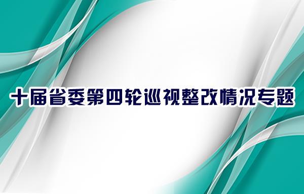十届省委第四轮巡视整改情况专题