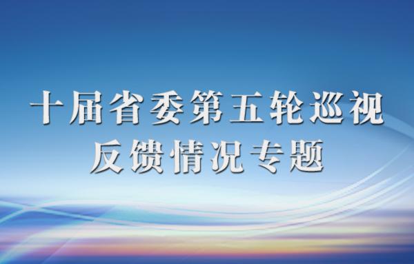 十届省委第五轮巡视反馈情况专题