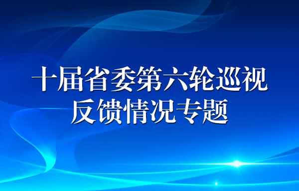 十届省委第六轮巡视反馈情况专题