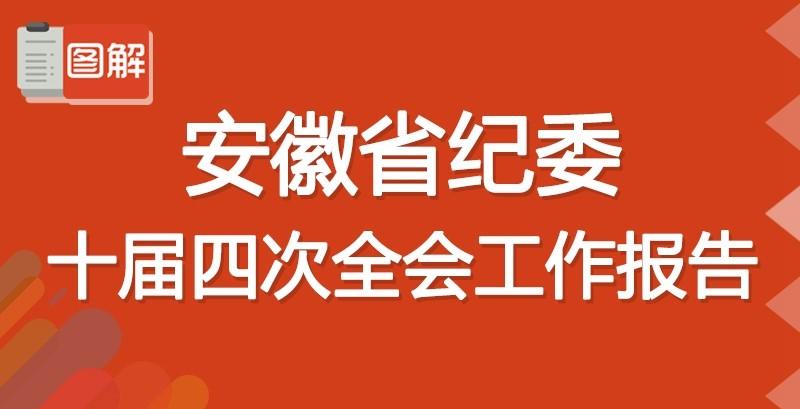 图解安徽省纪委十届四次全会工作报告