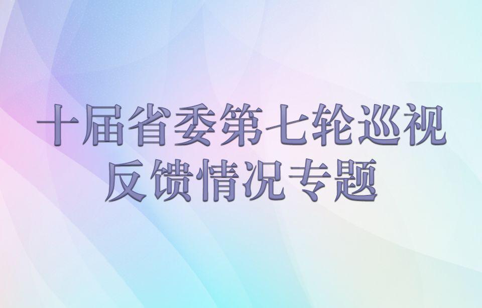 十届省委第七轮巡视反馈情况专题