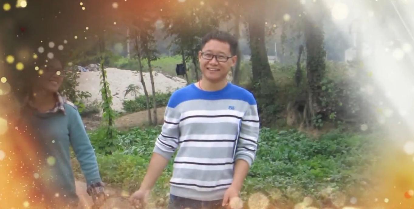 【視頻 】夏花,在風雨中綻放