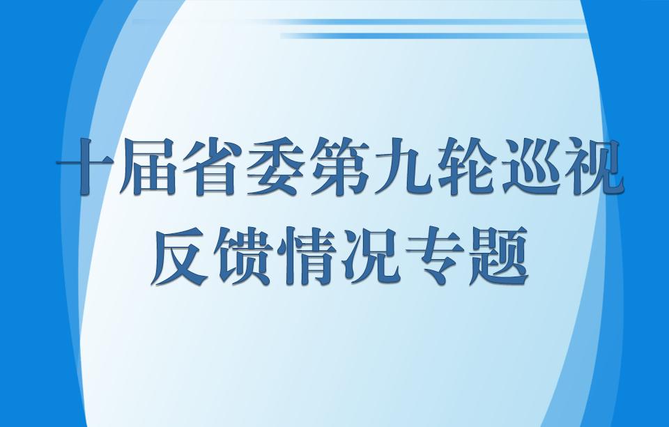 十届省委第九轮巡视反馈情况专题