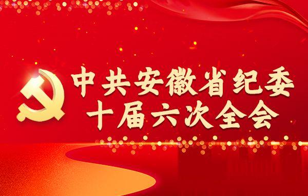 中共安徽省纪委十届六次全会专题