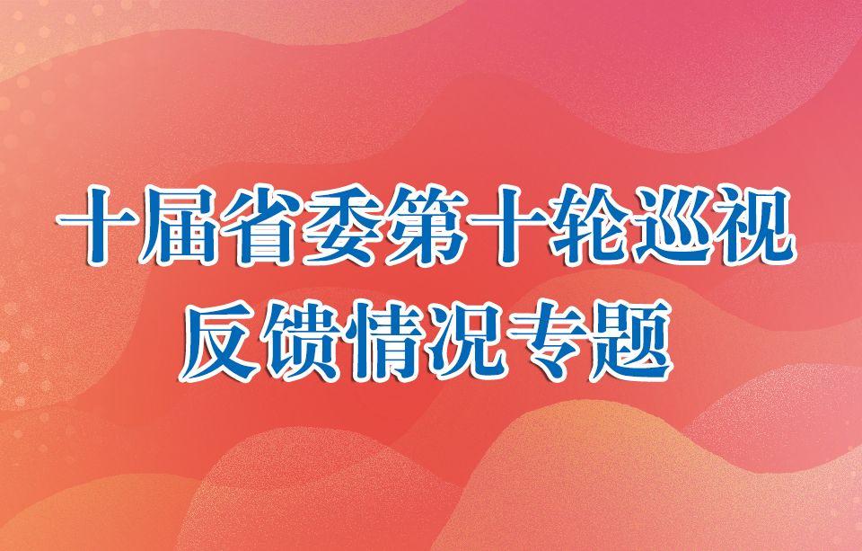 十届省委第十轮巡视反馈情况专题