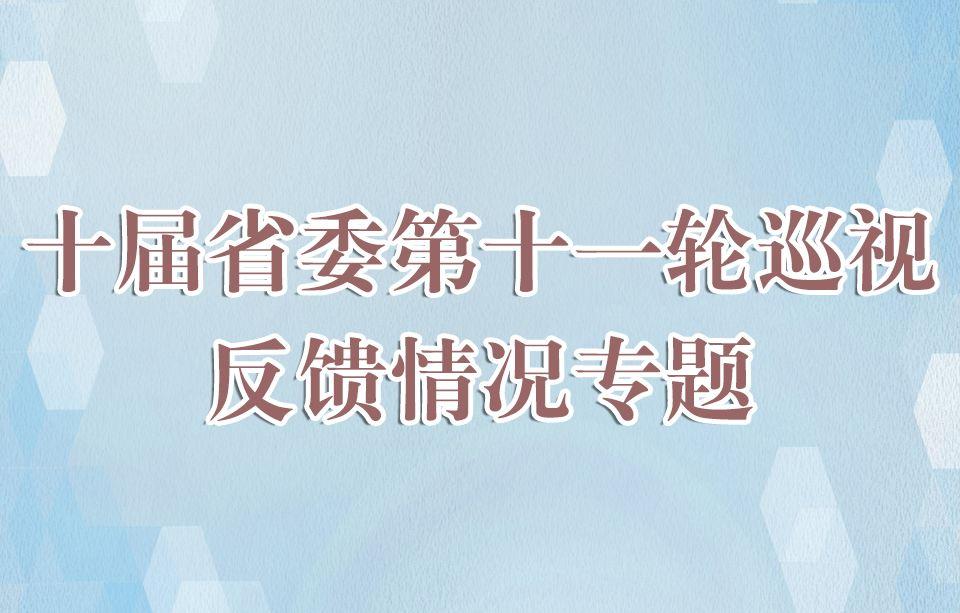 十届省委第十一轮巡视反馈情况专题