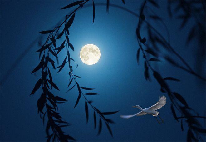 镜头 | 万里无云镜九州 最团圆夜是中秋