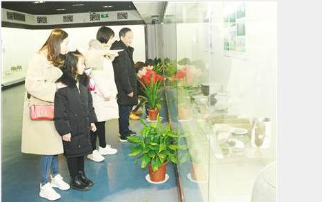 """""""有戏安庆""""多彩学问闹新春 ——安庆春节期间学问活动综述"""