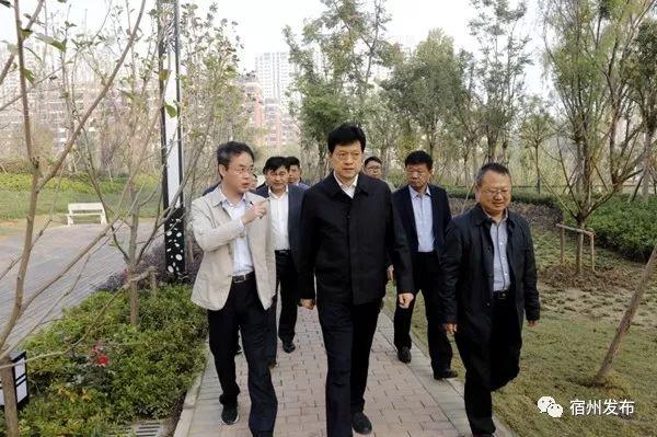 杨军调研城区黑臭水体治理工作