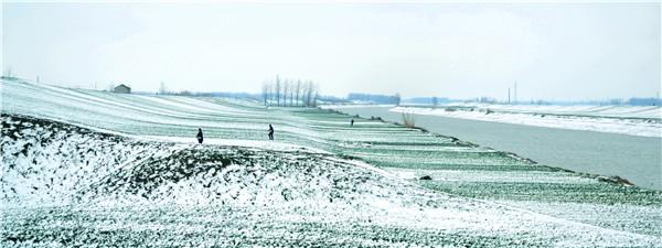 镜头│春来又是一场雪 银妆素裹扮泗州