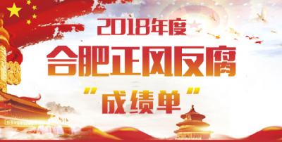 """合肥:亮出2018年度正风反腐""""成绩单"""""""