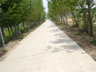 黄湾镇畅通工程精工细作保质保量