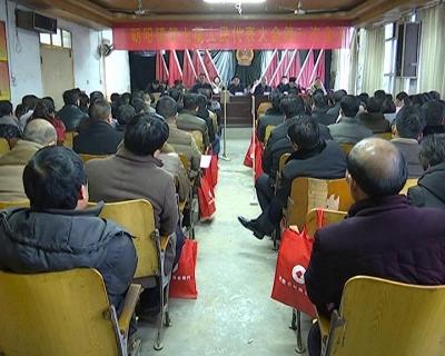 朝阳镇第七届人民代表大会第一次会议召开