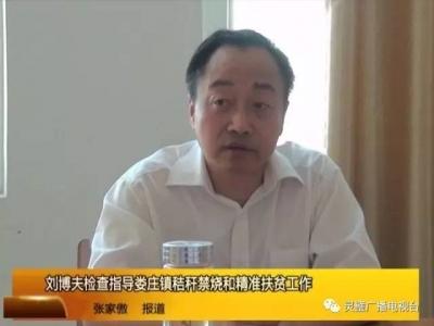 刘博夫检查指导娄庄镇秸秆禁烧和精准扶贫工作
