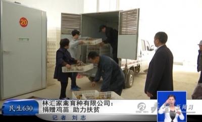 林汇家禽育种有限公司:捐赠鸡苗助力扶贫