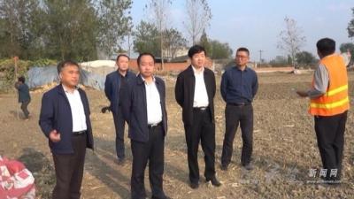 县委书记刘博夫检查我县土地增减挂和农村危房改造工作