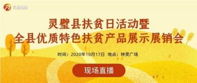 【直播】灵璧县扶贫日活动暨全县优质特色扶贫产品展示展销会