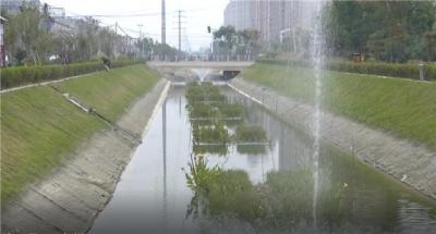 灵城区黑臭水体治理工作通过市环保督察组销号验收