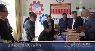 芜湖市关工委来灵考察学习