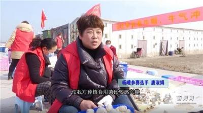 """杨疃镇:""""三八""""节削蘑菇大赛 引导妇女投身产业发展"""