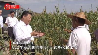 独家视频丨习近平走进田间地头 与陕北老乡拉家常