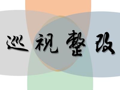 """六安裕安:組織開展巡視整改  """"兩自兩提""""工作"""