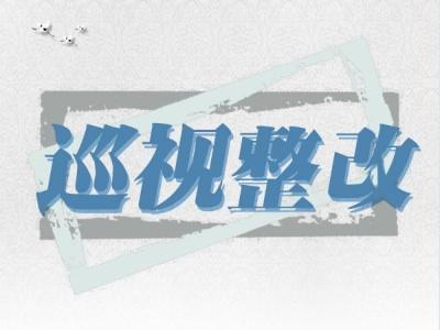中共休宁县委关于十届省委第一轮巡视整改情况的通报