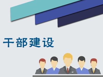 """亳州谯城:坚持""""三聚焦"""" 着力打造高素质专业化干部队伍"""