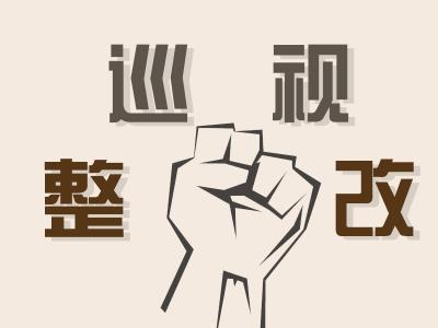 中共安徽省委政法委员会关于巡视整改进展情况的通报