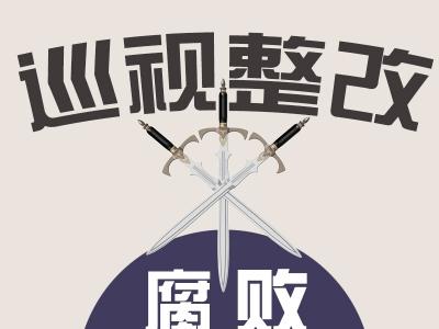 中共庐江县委关于十届省委第三轮巡视整改情况的通报