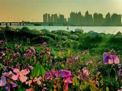 蚌埠:运用五大发展理念推进巡察工作