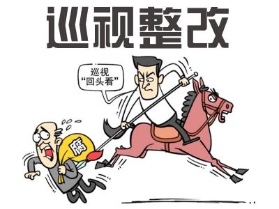 中共淮南市谢家集区委关于十届省委第二轮巡视整改情况的通报