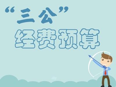 """安徽省纪委省监察厅2017年""""三公""""经费预算"""