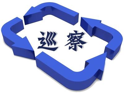 安庆:立足政治巡察 制定整改措施296条
