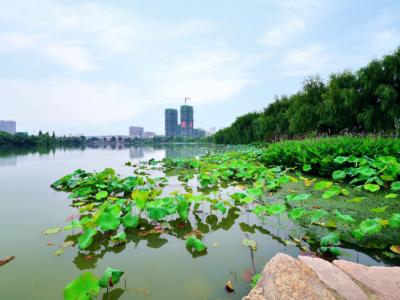"""【权威评论】安徽:环保""""高压线""""持续带电 防止环境污染问题反弹"""