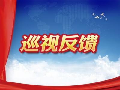 省委第八巡视组向蚌埠市禹会区反馈巡视情况