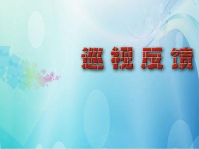 省委第十巡视组向安徽广电传媒产业集团有限责任公司党委反馈巡视情况