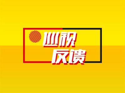 """省委第一巡视组向霍邱县委反馈巡视""""回头看""""情况"""