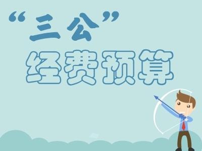 """安徽省纪委省监察厅2016年一般公共预算财政拨款""""三公""""经费支出决算情况说明"""