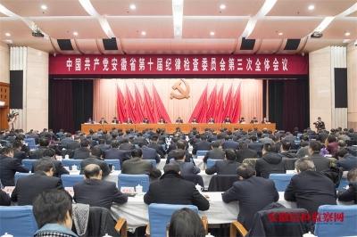 刘惠在中共安徽省纪委十届三次全会上的工作报告