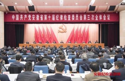 中国共产党安徽省第十届纪律检查委员会第三次全体会议决议