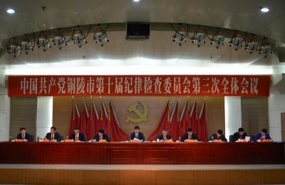 铜陵:全面贯彻新时代党的建设总要求 奋力开创全面从严治党新局面