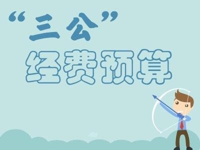 """安徽省纪委监委2018年 """"三公""""经费预算"""