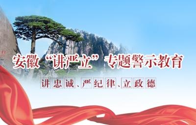"""安徽""""讲严立""""专题警示教育"""