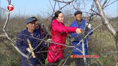 【榜样·讲忠诚 严纪律 立政德】李筱姣:85后女村支书的富民梦