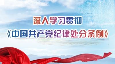 深入学习贯彻《中国共产党纪律处分条例》