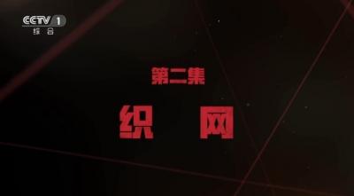 电视专题片《红色通缉》 第二集 《织网》